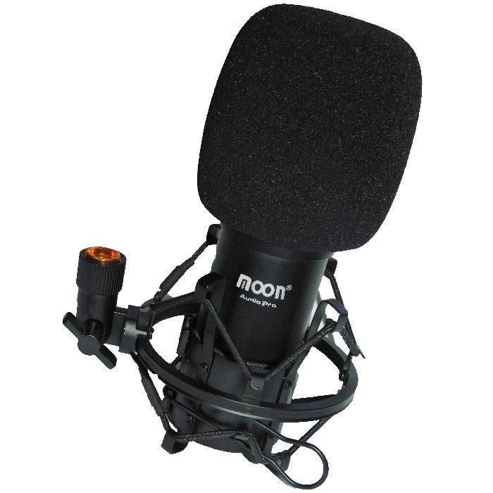 Microfono De Grabacion