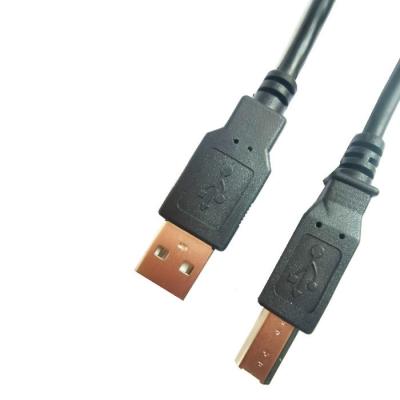 Cable De Usb Am A Usb Bm. De 2mts